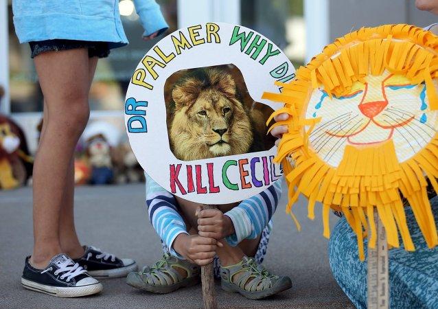 Zimbabue pide a EEUU la extradición del asesino del león Cecil