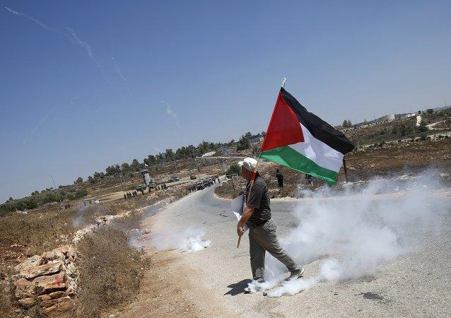 La bandera de Palestina (archivo)