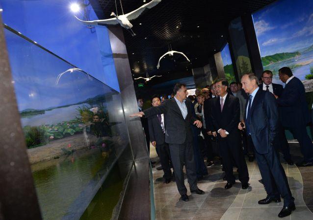 El presidente Putin visita el oceanográfico de la isla Russki