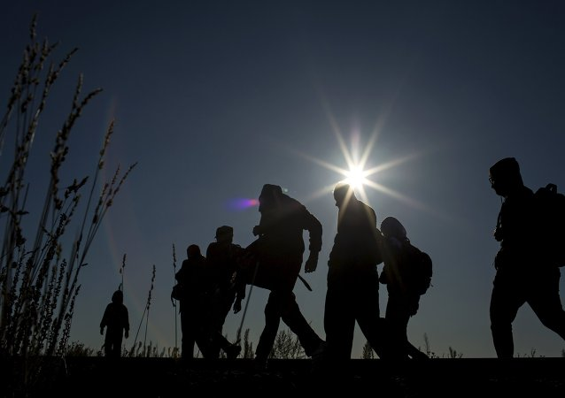 Bulgaria bloquea su frontera para inmigrantes ilegales, según primer ministro