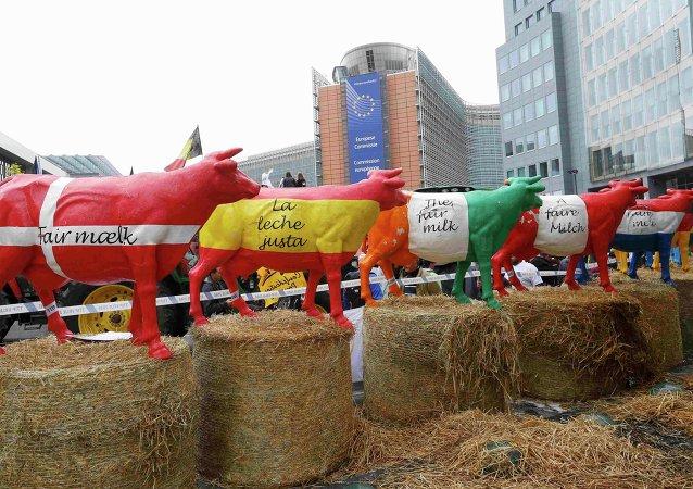 Protesta de granjeros europeos en Bruselas, Bélgica, el 7 de septiembre, 2015