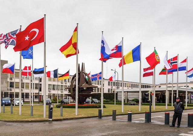 Armenia apuesta por una política personalizada de la OTAN en Cáucaso Sur