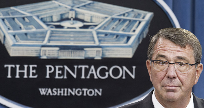 Ashton Carter, secretario de Defensa de EEUU