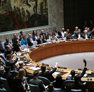 Consejo de Seguridad de la ONU en la sede en Nueva York