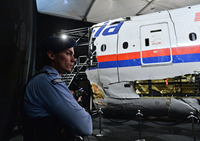 Parte del avión que realizaba el vuelo MH17 de Malaysa Airlines