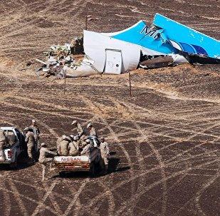 Los restos del Airbus-321 siniestrado en Egipto