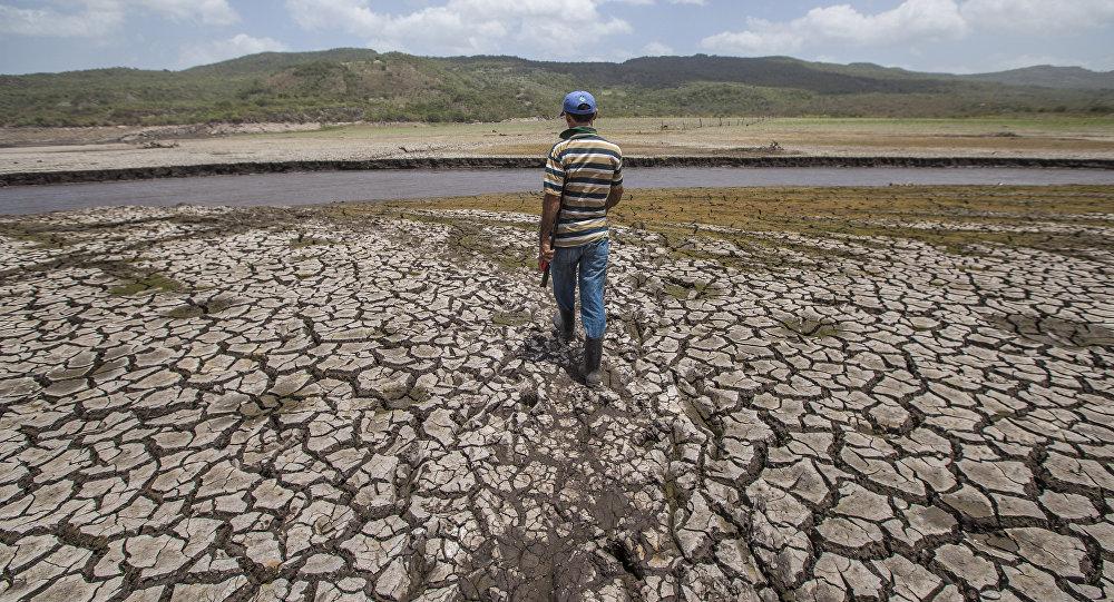 Sequía causada por fenómeno El Niño (Archivo)