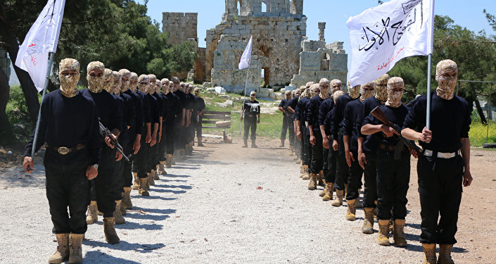 Combatientes del Ejército Libre Sirio (ELS)