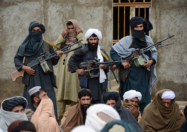 Miembros del movimiento Talibán