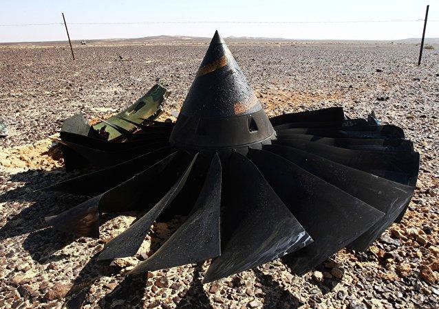 EEUU dispuesto a unirse a la investigación del siniestro del A321 en Egipto