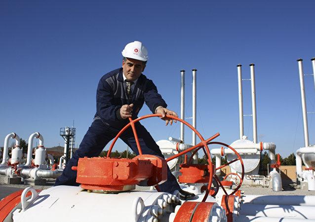 Un trabajador de la empresa gasística turca BOTAS