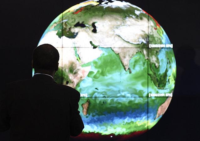 Un participante de la XXI Conferencia sobre el Cambio Climático (COP21)