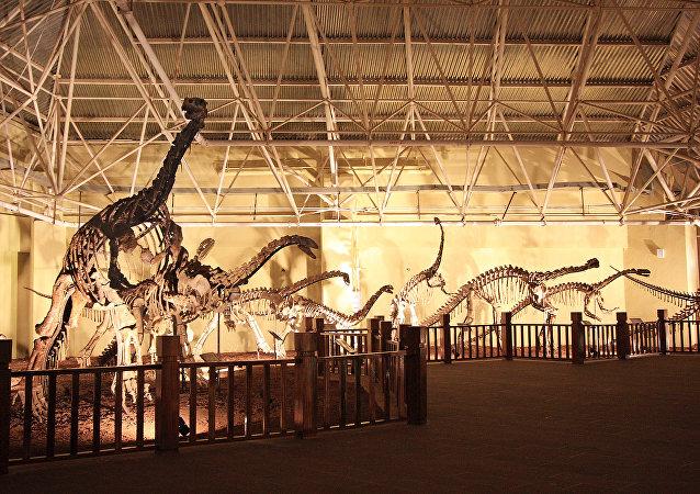 Fósiles de un Lufengosaurio (archivo)