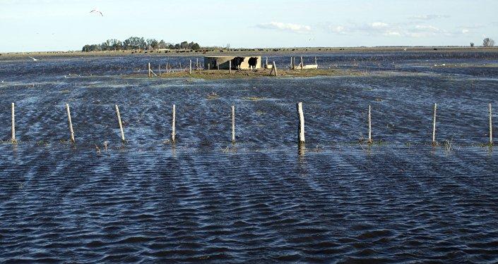 Condonarán deudas a productores agropecuarios afectados por las inundaciones
