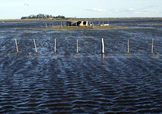 Inundaciones como consecuencias de las lluvias en Argentina (Archivo)