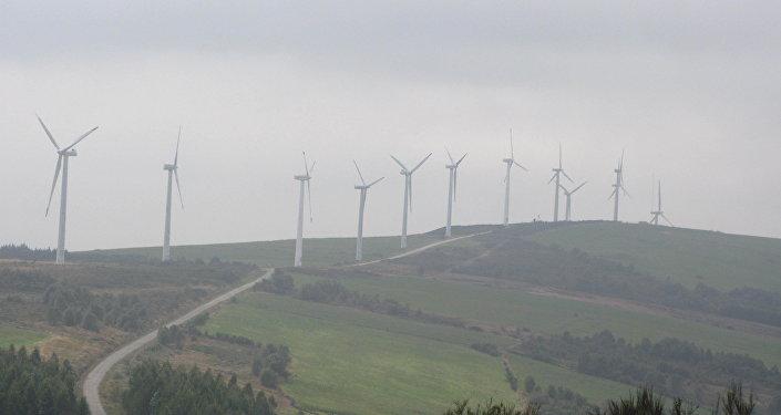 Parque de energía eólica (archivo)