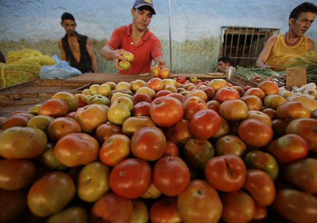 Un cubano vende tomatos en un mercado en el centro de La Habana