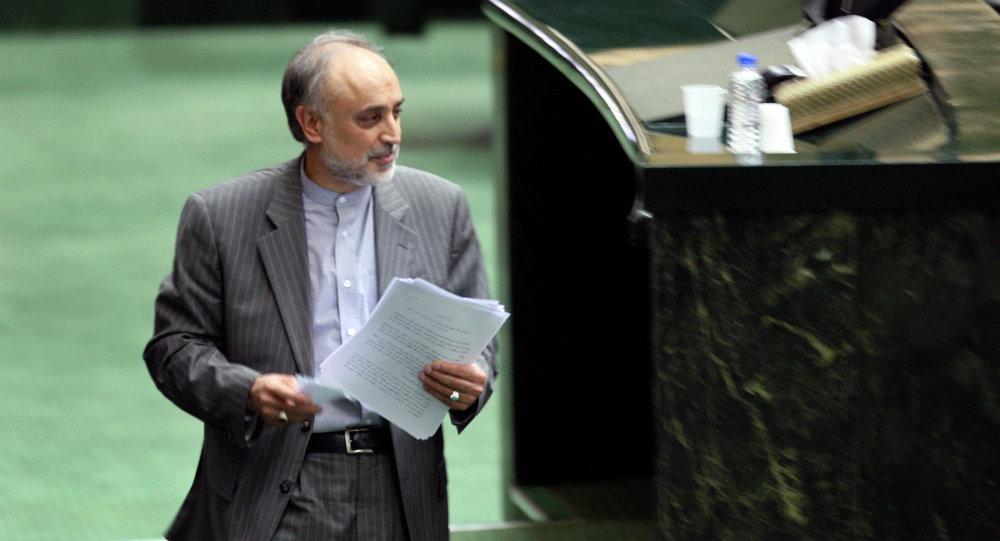 Líder de la Organización Atómica de Irán, Ali Akbar Salehi