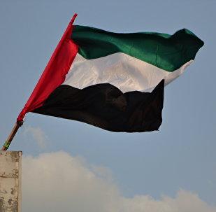 La bandera de Emiratos Árabes Unidos (archivo)