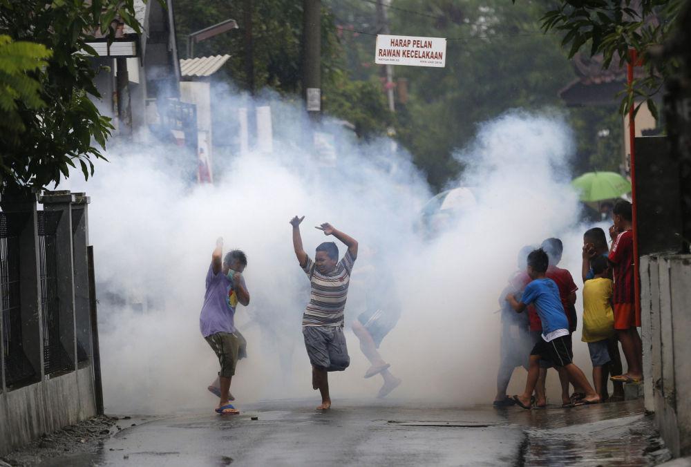 Guerra de mosquitos: la lucha contra el virus del Zika