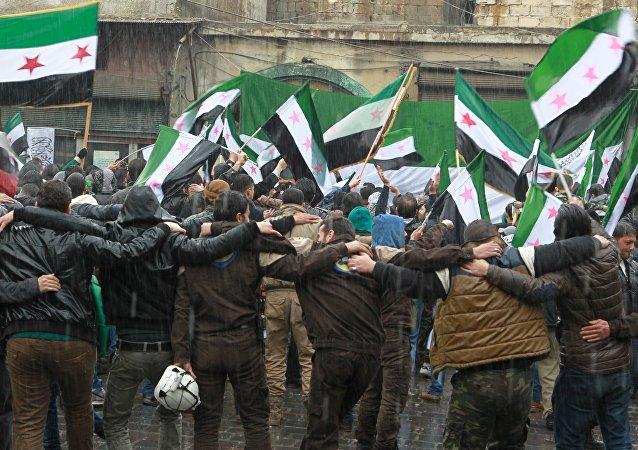 Las banderas de la oposición siria