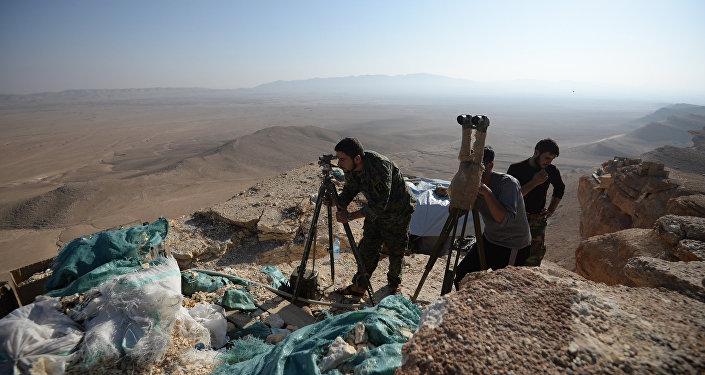 Las posiciones del Ejército sirio cerca de Palmira