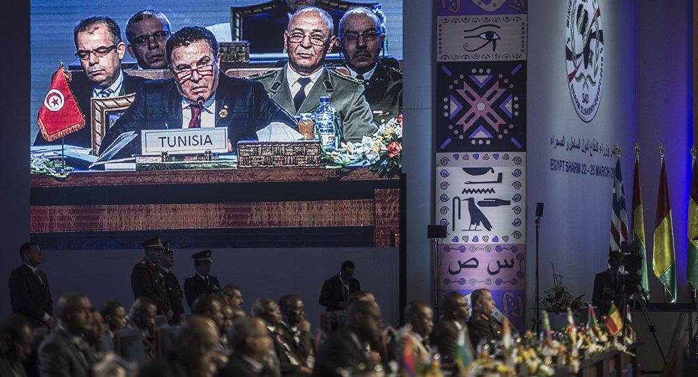 Reunión de los ministros de Defensa de la CEN-SAD en Egipto