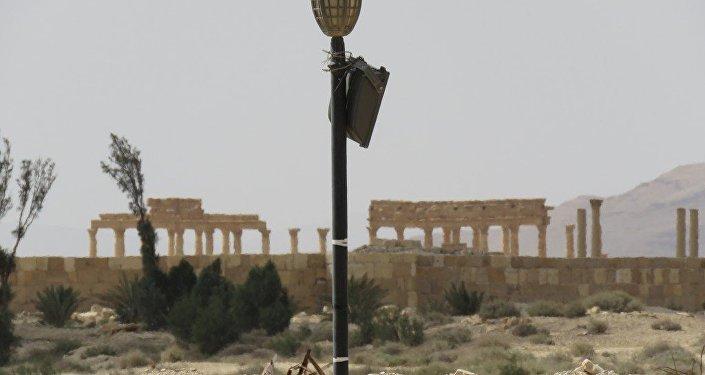 Palmira liberada de los yihadistas, que tenían el control de la histórica ciudad desde hacía un año
