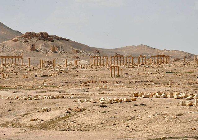 La ciudad de Palmira, Siria provided by SANA on March 27, 2016