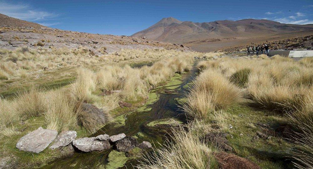 Ministro de defensa visitará a los nueve bolivianos detenidos en Chile