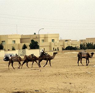 Sáhara Occidental