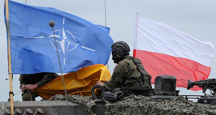 Soldados polacos durante las maniobras de la OTAN Noble Jump