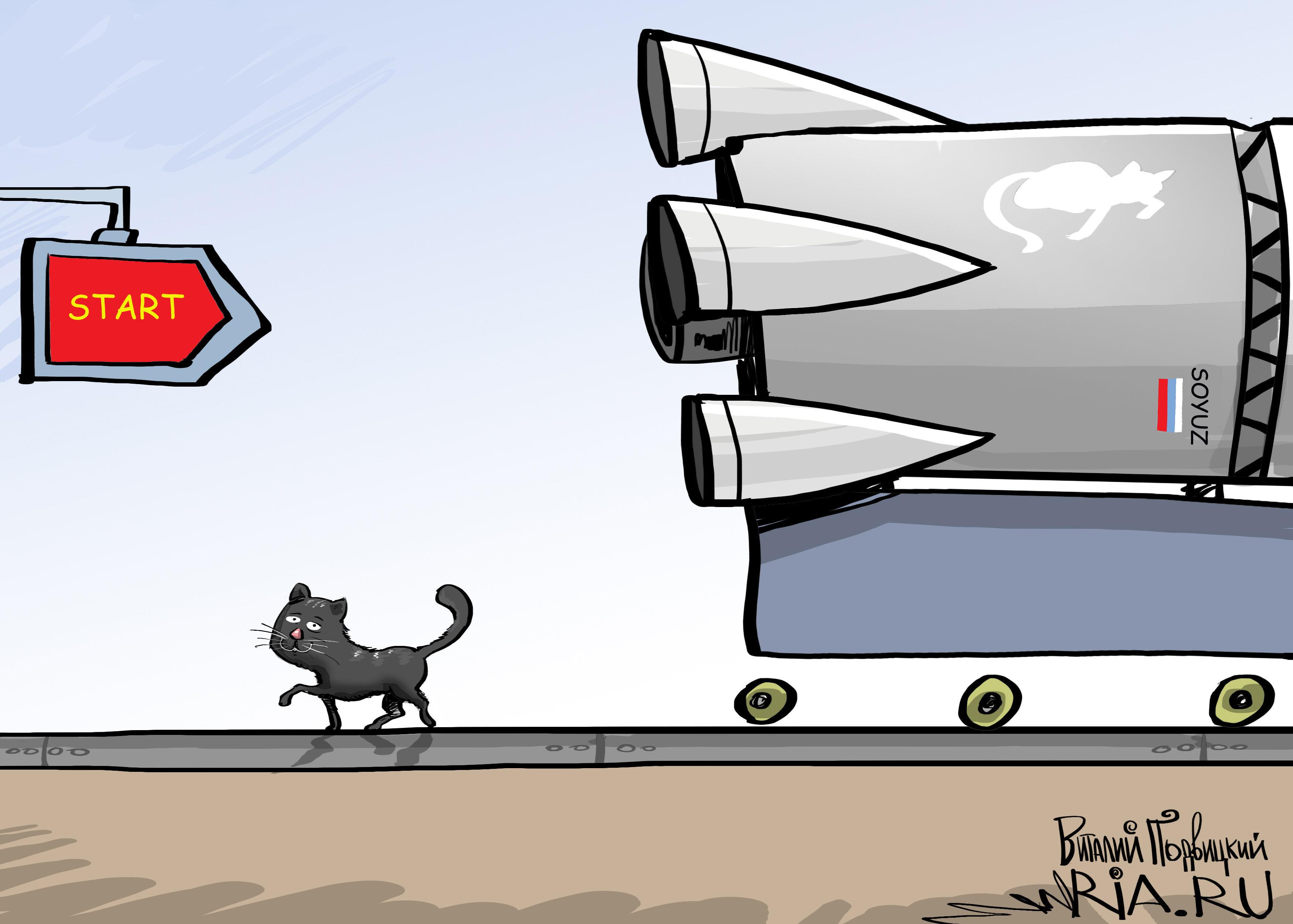 El gato que vive en el cosmódromo de Vostochni