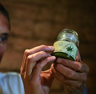 Cannabis medicinal (archivo)