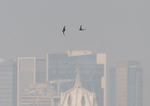 La emergencia ambiental en México