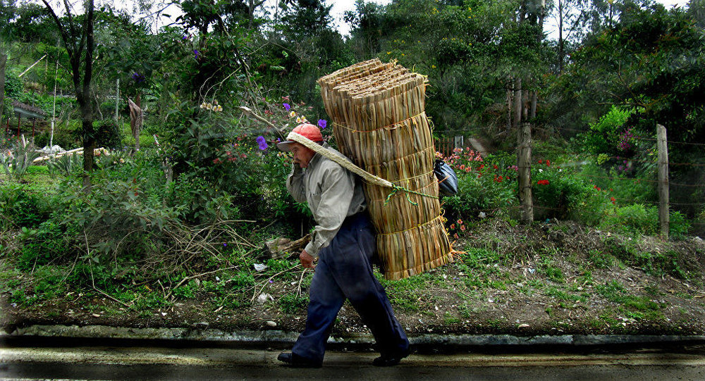 Campesino colombiano