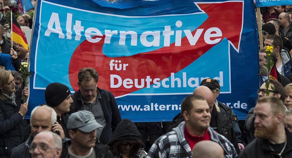 Partidores del Alternativa para Alemania en Berlín (archivo)