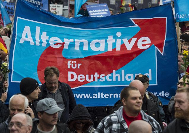 Partidarios del Alternativa para Alemania en Berlín