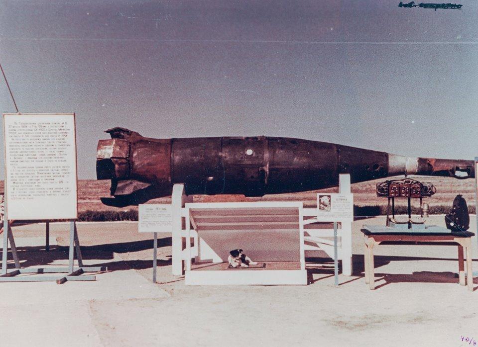 La perra Ajedrezada, frente a la cabeza del misil R-5A