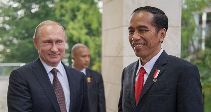 El presidente ruso, Vladímir Putin y su homólogo indonesio, Joko Widodo