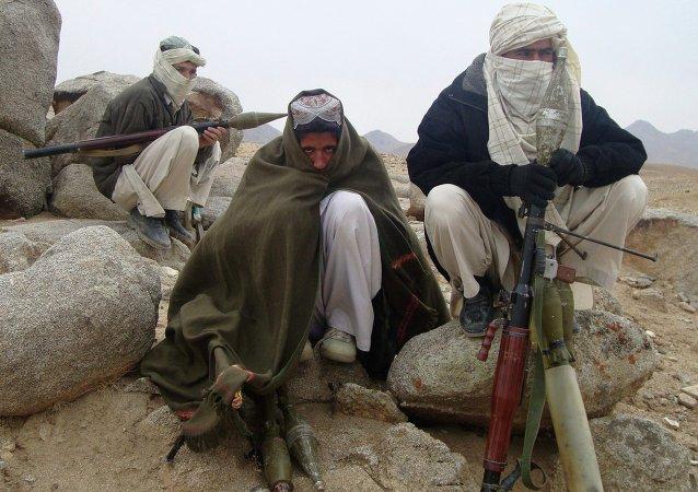 Militantes del Talibán