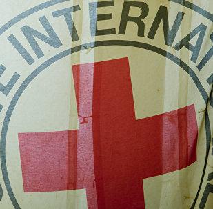 Las FARC entregan a Cruz Roja Colombia a un menor que integraba la guerrilla