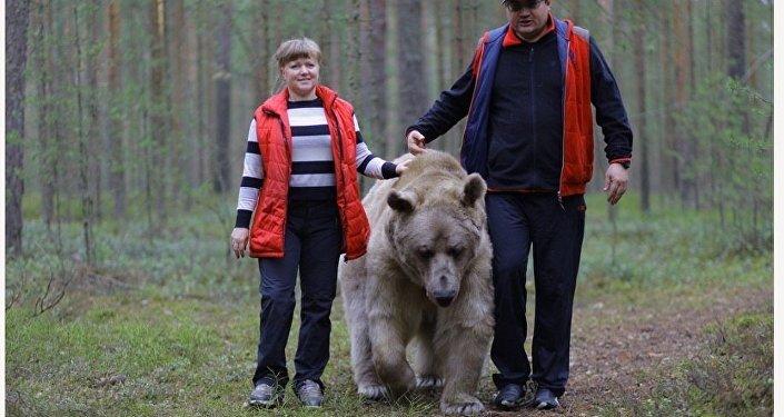 El oso Stepán
