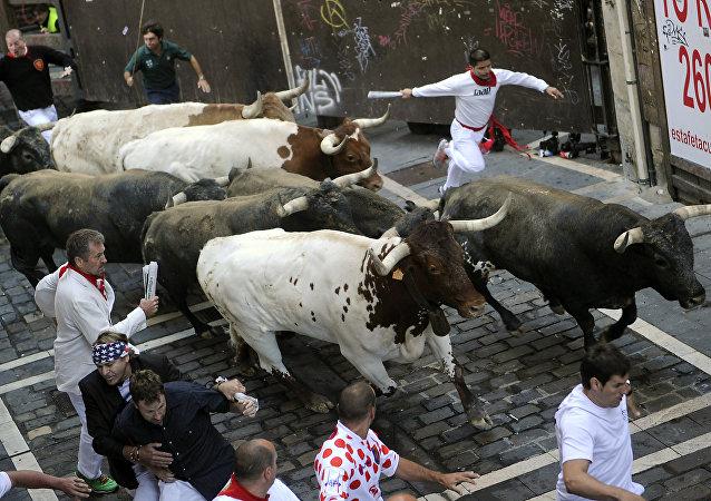Celebraciones regionales de San Fermín de 2015. Archivo.