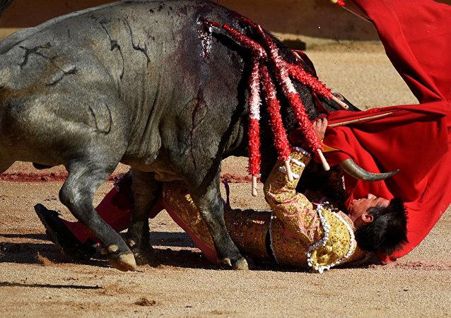 El torero español Francisco Marco participa en el festival de San Fermín, en Pamplona.