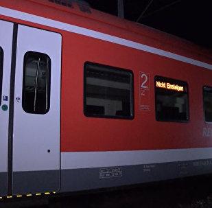 Hombre armado con un hacha ataca a pasajeros en tren en Alemania