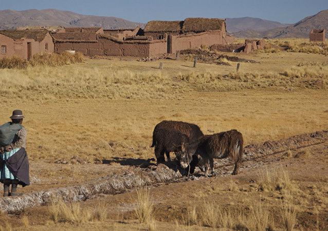 Una granja en Bolivia
