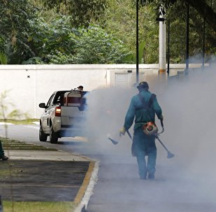 La lucha contra el virus Zika en Río de Janeiro