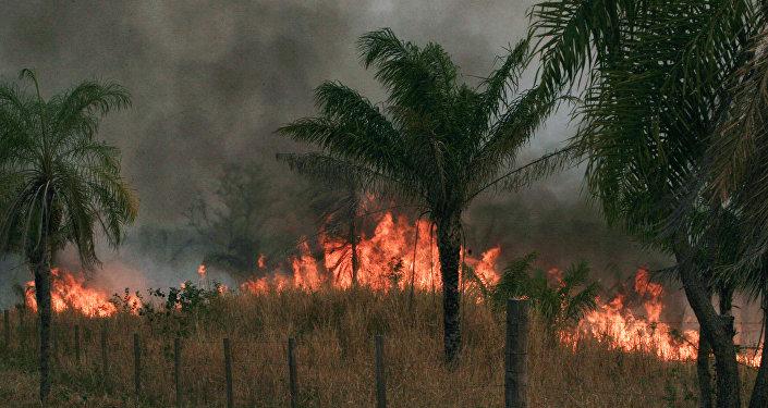 Incendios forestrales en Bolivia (archivo)