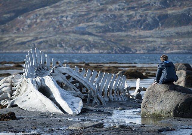 Escena de la película 'Leviatán'